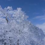 雪山 -GRD-