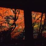 京都 -kyoto-